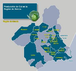 Municipios productores