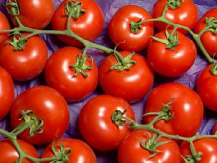 What Is Ppm >> El Tomate- Cultivo - Región de Murcia Digital