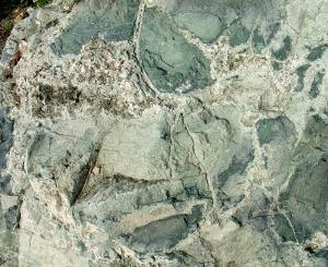 Ofita con mineralizaciones de prehenita, anfíboles y titanita por procesos de hidrotermalismo de Baños de Gilico (Cehegín)