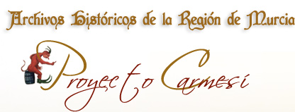 Proyecto Carmes�