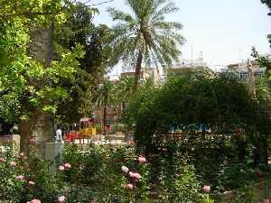 El servicio de parques y jardines del ayuntamiento de for Florida v jardines