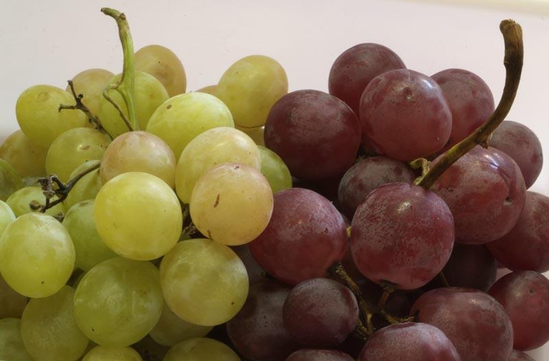 variedades m s frecuentes de uva de mesa