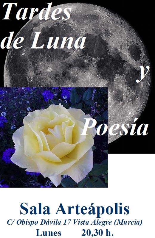 Tardes de Luna y Poesía.